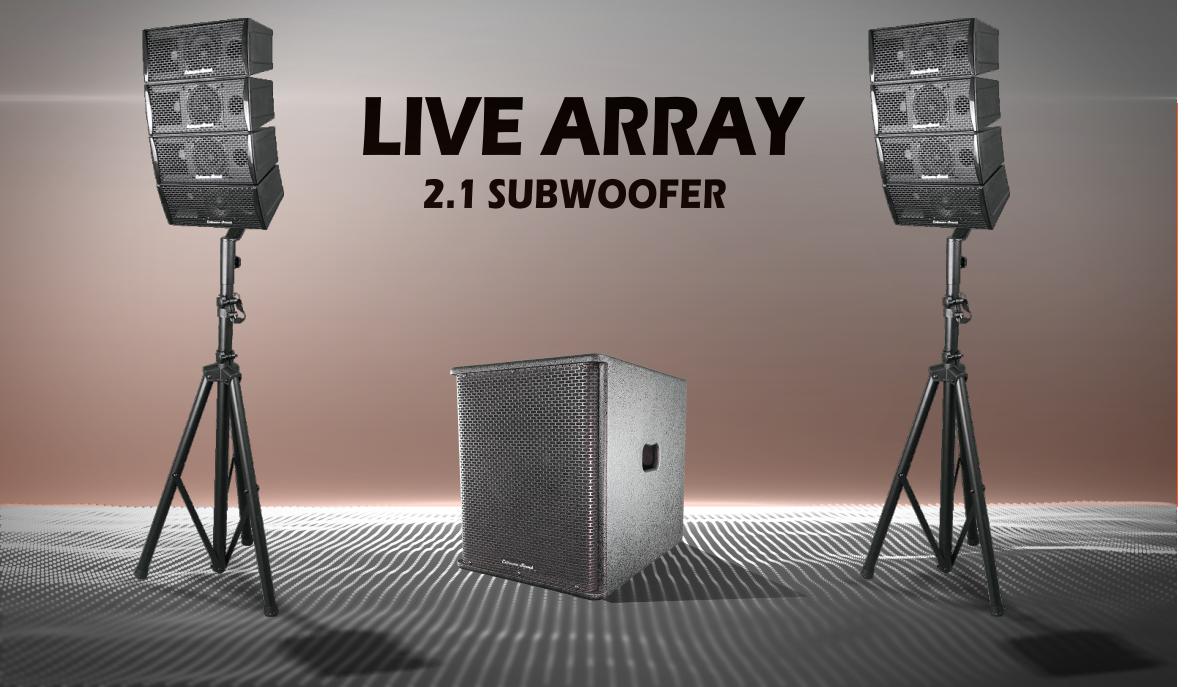 Impianto live array con woofer e due satelliti